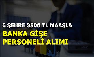 6 Şehre 3500 TL Maaşla Banka Gişe Personeli Alımı: Başvuru İnternetten