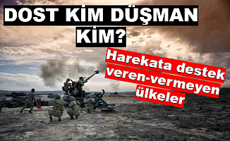 Barış Pınarı Harekatı'nda Hangi Ülke Türkiye'ye Destek Veriyor , Hangileri Karşı Çıkıyor?