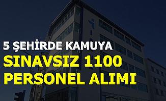 Başvuru İnternetten: 5 Şehirde Kamuya Sınavsız 1100 Personel Alımı