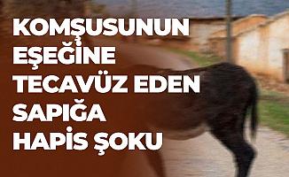 Eskişehir'de Komşusunun Eşeğine Tecavüz Eden Sapığa Hapis Şoku