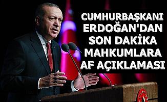 Son Dakika: Erdoğan'dan Mahkumlara Af Açıklaması
