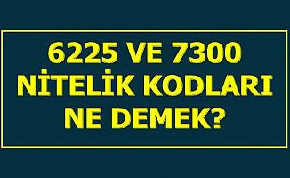 6225 ve 7300 Nitelik Kodu Nedir? Ne Anlama Gelmektedir?
