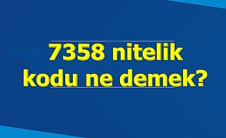 7358 Nitelik Kodu Nedir?