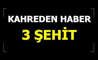 Son Dakika... MSB Kahreden Haberleri Verdi: 3 Şehit