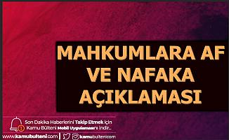 Abdulhamit Gül'den Mahkumlara Af ve Süresiz Nafaka Açıklaması 2020 (Genel Af Gelecek mi?)