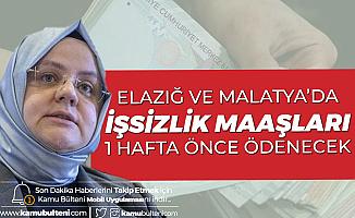 Elazığ ve Malatya'da İşsizlik Maaşı Ödemeleri 31 Ocak'ta Yapılacak