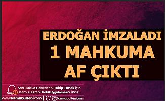 Erdoğan İmzaladı: 1 Mahkuma Af Çıktı