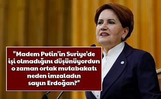 Meral Akşener'den Erdoğan'a Putin Tepkisi