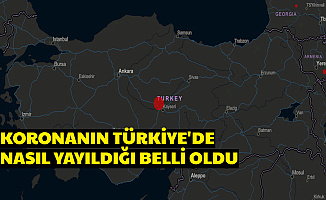 Coronavirüsün Türkiye'ye Nereden Geldiği , Nasıl Yayıldığı Belli Oldu
