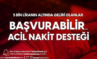 Halkbank Aylık 376 TL Taksitle 10 Bin TL Bireysel İhtiyaç Kredisi Veriyor