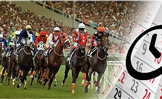 TJK At Yarışları Ne Zaman Başlayacak? Açıklama Geldi