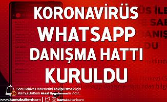 Whatsapp Kullananlar için Sağlık Bakanlığı'ndan Koronavirüs Danışma Hattı Hizmeti