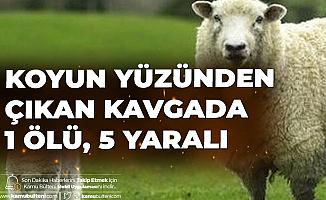 Koyun Otlatma Kavgası: 1 Ölü 5 Yaralı