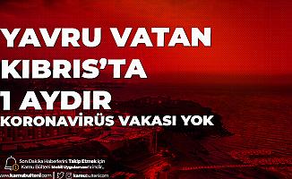 Yavru Vatan Kıbrıs'ta 1 Aydır Koronavirüs Vakası Görülmedi