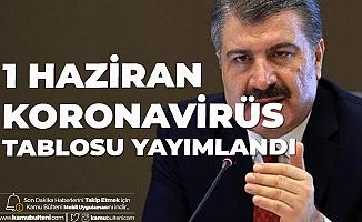 1 Haziran Türkiye Koronavirüs Güncel Tablosu Yayımlandı