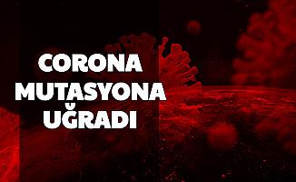 Son Dakika: Corona 3 Ülkede Mutasyon Geçirdi (Mutasyon Nedir?)