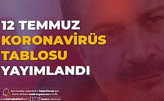 12 Temmuz Türkiye Koronavirüs Tablosu Yayımlandı