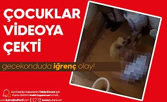Antalya'da Mide Bulandıran Olay! Hortumla Bağlayıp Cinsel İstismarda Bulundu