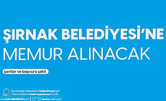 Şırnak Belediyesi'ne VHKİ ve Zabıta Memuru Alımı Yapılacak! İşte Başvuru Şartları...