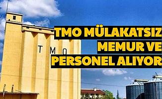 TMO Mülakatsız Kamu Personeli Alımı Yapıyor