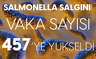 Kanada'da Salmonella Salgınında Vaka Sayısı 457'ye Yükseldi