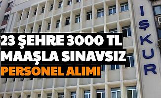 23 Şehre İŞKUR'dan 3000 TL Maaşla Sınavsız Personel Alımı-İşte Başvuru Adımları