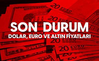 Dolar, Euro ve Altın Fiyatları Haftaya Yükselişle Başladı