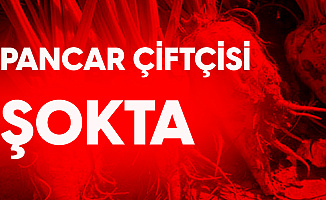 Fahrettin Yokuş: Pancar Çiftçisi Şokta