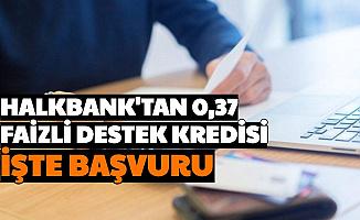 Halkbank'tan Destek Kredisi: Bu Şartları Taşıyanlara 0,37 Faizli Kredi