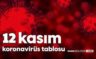 Son Dakika: Sağlık Bakanlığı 12 Kasım Koronavirüs Tablosu Hasta Vaka Vefat Sayısı