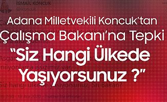 Adana Milletvekili İsmail Koncuk'tan Selçuk'a 'Asgari Ücret' Vurgulu Tepki: Siz Hangi Ülkede Yaşıyorsunuz ?