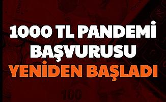 Pandemi 1000 TL Yardımında Başvurular Yeniden Başladı