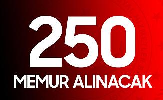Aile, Çalışma ve Sosyal Hizmetler Bakanlığı 250 Memur Alımı Yapacak! İşte Mezuniyetlere Göre Kontenjan Dağılımı