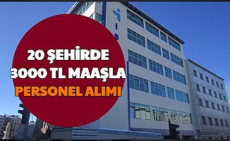 Büro Personeli, Sekreter, İşçi... 20 Şehre 3 Bin TL Maaşla Personel Alımı