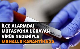İlçe Alarmda: Mutasyonlu Virüsün Olduğu Mahalle Karantinaya Alındı