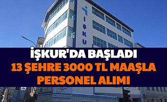İŞKUR'da Başladı: 13 Şehre 3 Bin TL Maaşla Personel Alımı