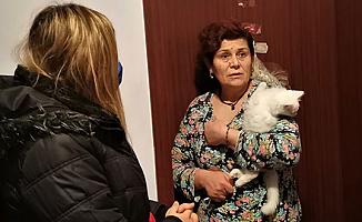 Kadın İKM'nin Evine Van Kedisi Operasyonu Düzenlendi