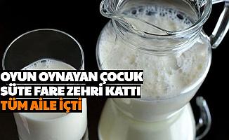 Oyun Oynayan Çocuk Süte Fare Zehri Koydu: Tüm Aile Sütü İçti
