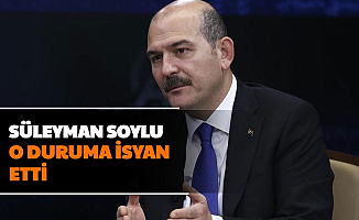 Süleyman Soylu O Duruma İsyan Etti