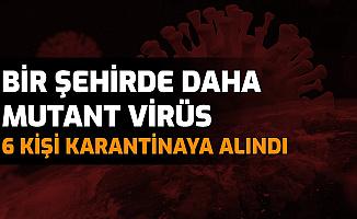 Bir Şehirde Daha Görüldü: 6 Kişide Mutasyonlu Virüs