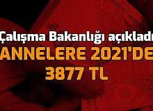 Çalışma Bakanlığı: Annelere 2021'de 3877 TL Nakit Destek