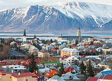 İzlanda Damızlık Erkek Başvurusu Komedisi