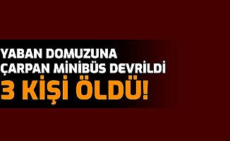 Kütahya Simav'da Feci Kaza: Domuza Çarpan Minibüste 3 Kişi Öldü