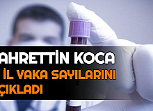 Son Dakika: Fahrettin Koca, İl İl Vaka sayılarını Açıkladı