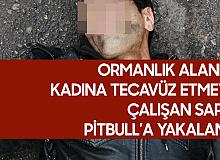 Ormanlık Alanda Kadına Tecavüz Etmeye Çalışırken Pitbull'a Yakalandı!