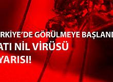 Batı Nil Virüsü Konusunda Uzmanlardan Uyarı Geldi! Kesinlikle Temas Etmeyin