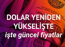 Dolar 8.71 TL'ye Yükseldi