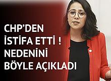 Sera Kadıgil Sütlü CHP'den İstifa Etti