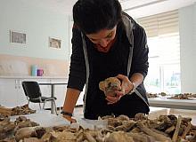 9 bin yıl önce yaşayanlar keçi ve sığırı evcilleştirmişler