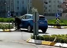 Bafra'da belediyenin refüje diktiği çiçekleri çaldılar